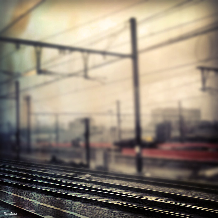 train_tren_donibane1