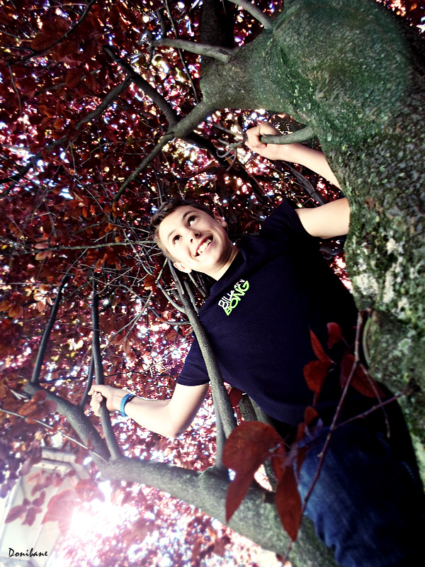 El balón encajado en el árbol por Donibane