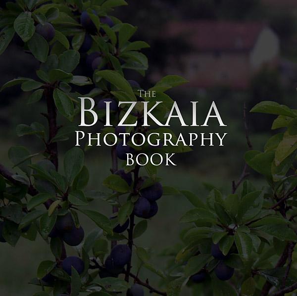 Nuevos proyectos de Artshow Collective: libro de fotografías de Bizkaia